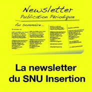 Newsletter Insertion n°1