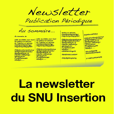 Newsletter du SNU Insertion