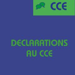 Votes sur les orientations formation au CCE