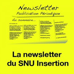 Newsletter Insertion n°4