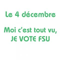 2014 : quelques raisons de voter FSU